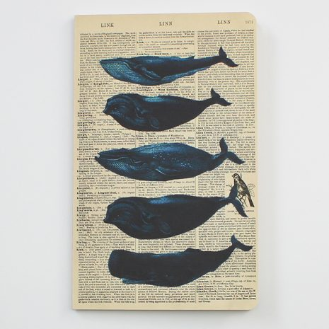 whales-notebook